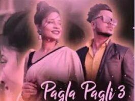 PAGLA PAGLI 3 LYRICS - ZB Songs Tumse Shadi Racha Ke Sanam (Rap) Song